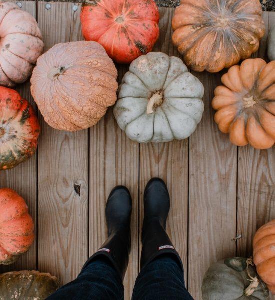 Les marchés d'automne sur la Côte d'Émeraude