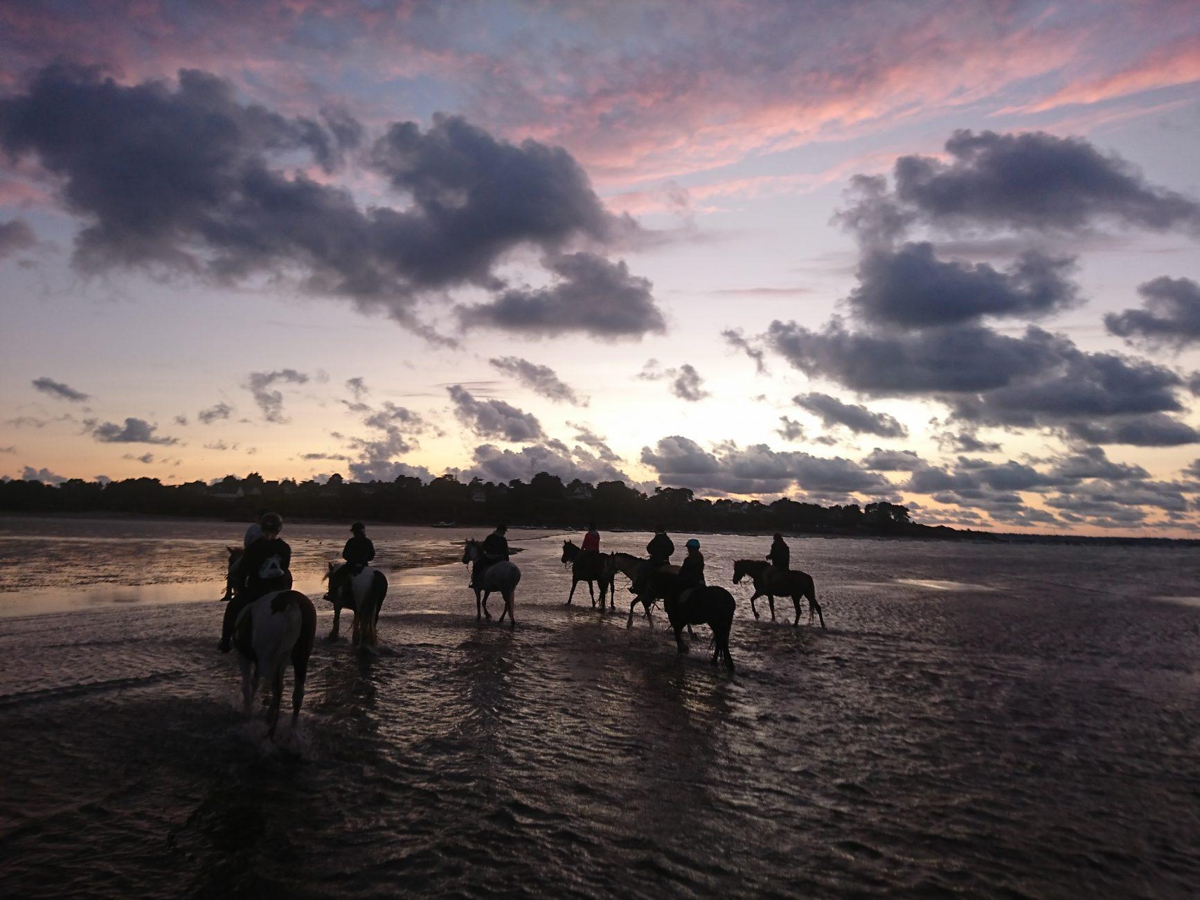 Ty Haras Lancieux balade au coucher de soleil